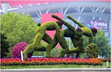 体育运动五色草造型