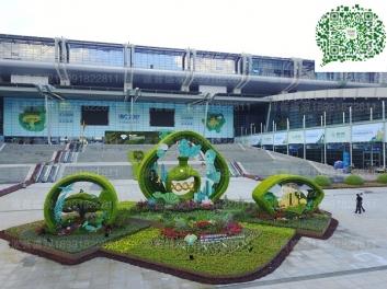 深圳会展中心立体花坛案例