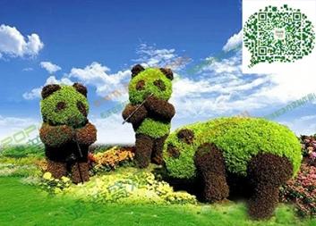 萌萌的熊猫绿雕、真的可爱极了!