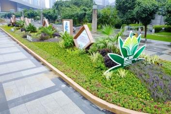 深圳城市管理局立体花坛案例