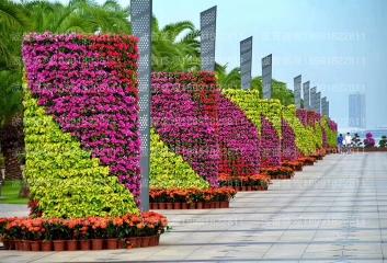 青岛上合峰会节点绿雕案例