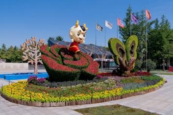 迎接少数民族运动会 立体花坛用于郑州景观大提升