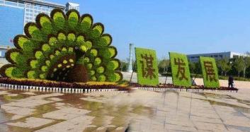 植物绿雕养护注意事项