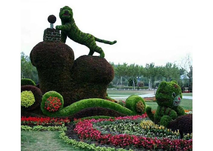 五色草造型厂家