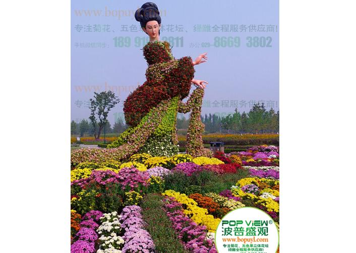 菊花展览价格