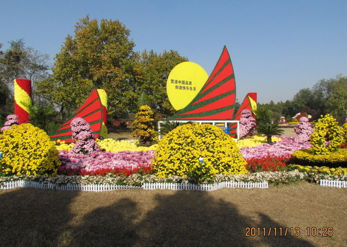 甘肃菊花展览