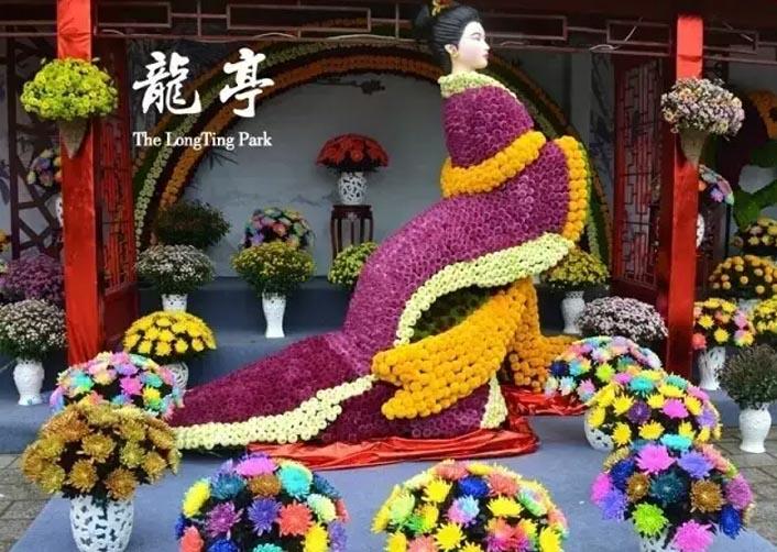 菊花展览布展