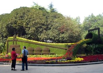 西安国庆绿雕