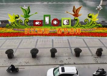 广场绿雕造型