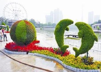 渭南景区绿雕