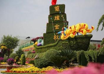 商洛公园菊花展