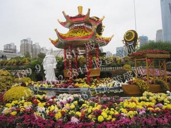 现代农业菊花展