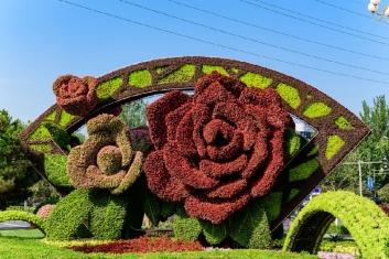 立体绿雕应用于大型国际会议景观提升
