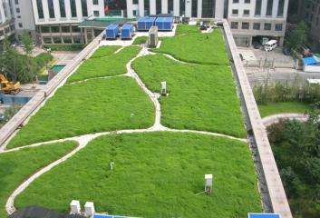 西安佛甲草屋顶绿化种植基地