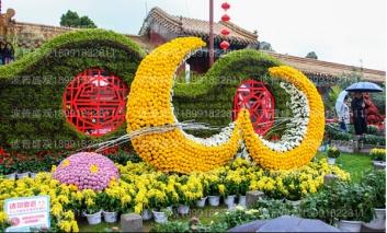 立体花坛造型中以菊花造型为主效果最佳