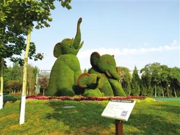 五色草造型、五色草雕塑